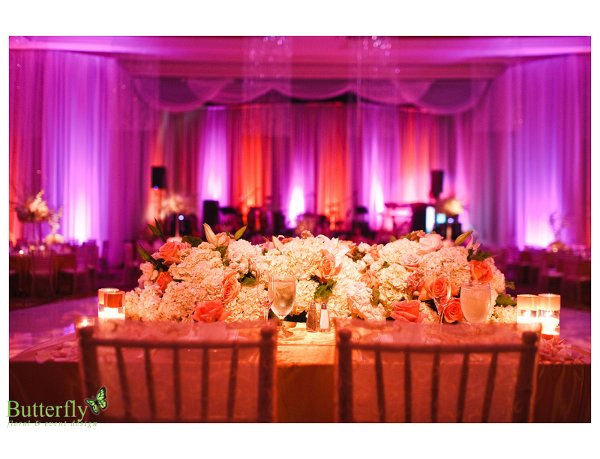 photo 61 of Butterfly floral & event design