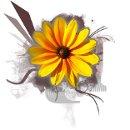 130x130_sq_1355513891412-copyoffb1