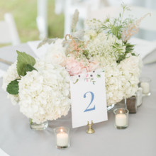 220x220 sq 1485555121480 kelsey combe photography  hamptons weddings weddin