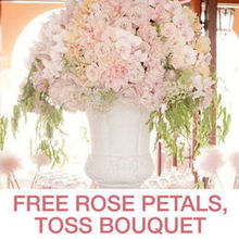 800ROSEBIG WHOLESALE WEDDING FLORIST