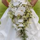 130x130 sq 1384842561722 kailua kona honolulu hawaii brides 2
