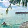 DA Luxury Travel image