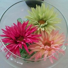 220x220 sq 1306758613645 davisfishbowlcenterpiece