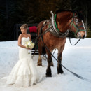 130x130_sq_1395791817296-bride-and-horse-drawn-sleigh.-winter-wedding-in-wh