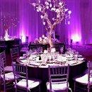 130x130 sq 1338771041883 purpleuplights