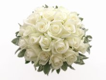 220x220 1267734829947 weddingflowersbridal