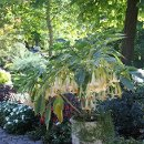130x130 sq 1354367317153 gardensatriversidereceptions