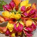 130x130 sq 1267601051532 flowers