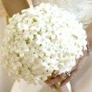 130x130 sq 1268144164897 wedding30