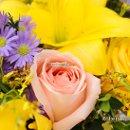130x130 sq 1361155794680 flowers0203robertl