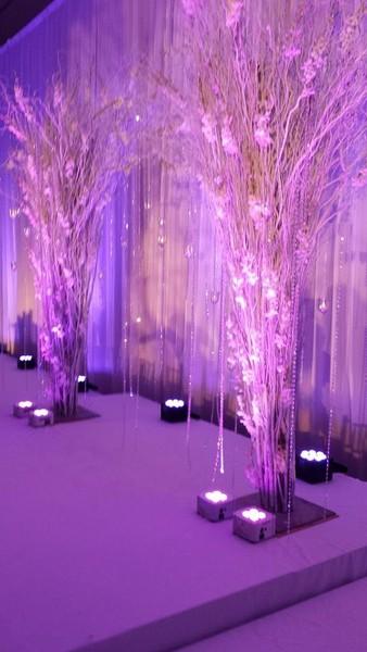 signature weddings  u0026 events