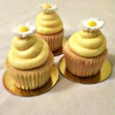130x130 sq 1268254866819 yellowcupcake