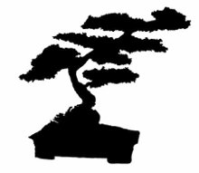 220x220 1268349684347 bonsai