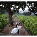 130x130 sq 1298441626224 vineyardweddingphoto
