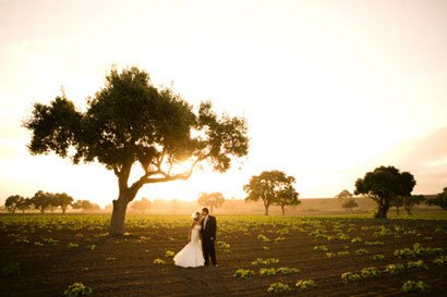 photo 8 of Sierra Wine Country Weddings