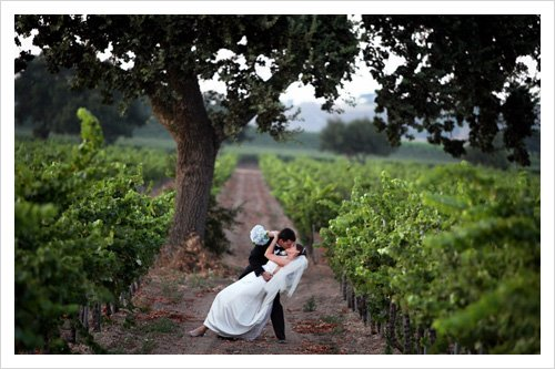 photo 17 of Sierra Wine Country Weddings
