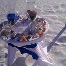130x130 sq 1344806471197 seashell