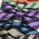 130x130 sq 1486062277827 striped groomsmen bow ties