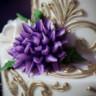 96x96 sq 1508178418335 00406maryleejeffwedding