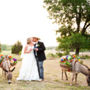 130x130 sq 1389127794715 star hill ranch wedding donkey
