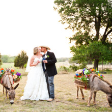 220x220 sq 1389127794715 star hill ranch wedding donkey