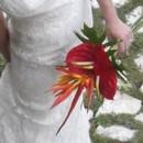 130x130_sq_1409779889259-tropical-bouquet