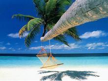 220x220 1422392092008 1422392076251 beach11