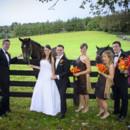 130x130 sq 1384434051714 horses at fence 10121317574