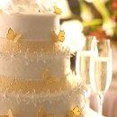 130x130_sq_1295562124907-butterflycake