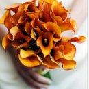130x130 sq 1315581358393 wedding05large