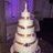 Custom Cake Design Reviews