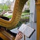 130x130 sq 1226344925038 harpist lindaking