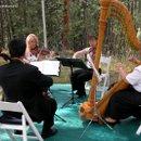 130x130 sq 1175041116566 trio+harp0011