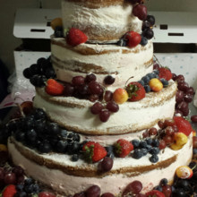 220x220 sq 1414270211261 untitlednaked cake