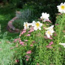130x130 sq 1425504572563 gardenlilies600