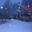 130x130 sq 1477063123049 greenhouse in winter