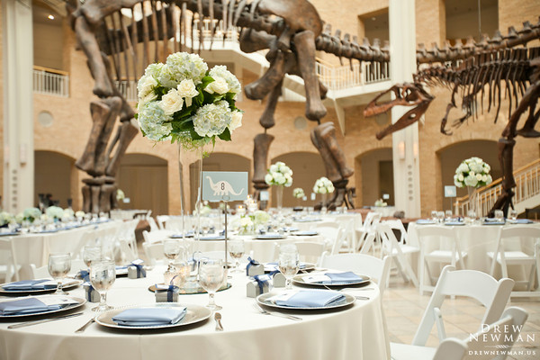 600x600 1395420524599 great hall dino numbers drew newma