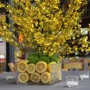 130x130 sq 1368383500857 oncids lemons