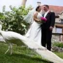 130x130 sq 1384028610949 bride