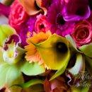 130x130 sq 1227297923203 23.flowercu