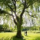 130x130 sq 1488147741605 june 4 2016 willow tree