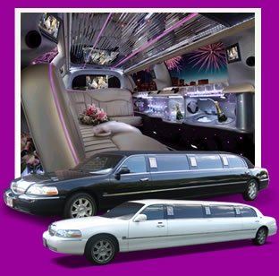 photo 3 of Lynette's Limousine Service, Inc.