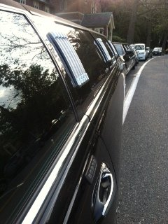 photo 44 of Lynette's Limousine Service, Inc.