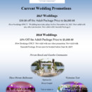 130x130 sq 1491233286821 wedding wire and knot promo 2017 2018