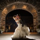 130x130 sq 1491515519573 michigan wedding venue looking glass photography 0