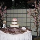 130x130 sq 1270061519130 cherryblossomcake