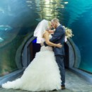 130x130 sq 1465587328499 5 29 16 bridegroomtunnela