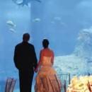 130x130 sq 1465587445884 bride groom exhibit