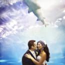 130x130 sq 1465587452771 bride groom shark