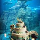 130x130 sq 1465587717657 cake tank cb